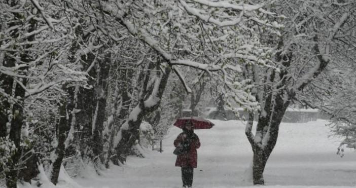 Зимата постепенно ще настъпва от следващата седмица с понижение на