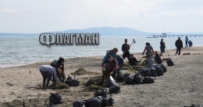 Снимка: ФлагманПодготовката на най-голямата ивица в Бургас - Северния плаж,