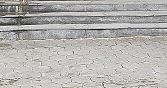 Снимка: Флагман.бгНеизвестни лица замеряха с яйца представителите на гражданско сдружение
