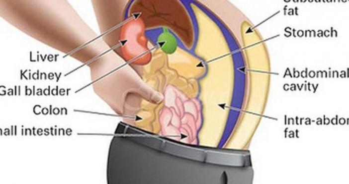 Човешкото тяло има естествена способност да премахва токсините. Въпреки това,