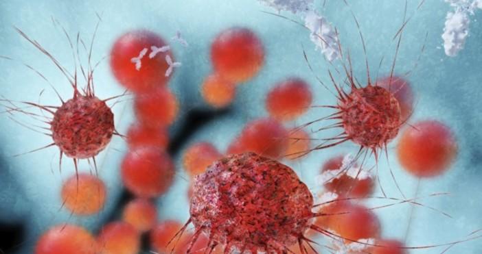 Повечето случаи на детска остра лимфобластна левкемия са свързани с