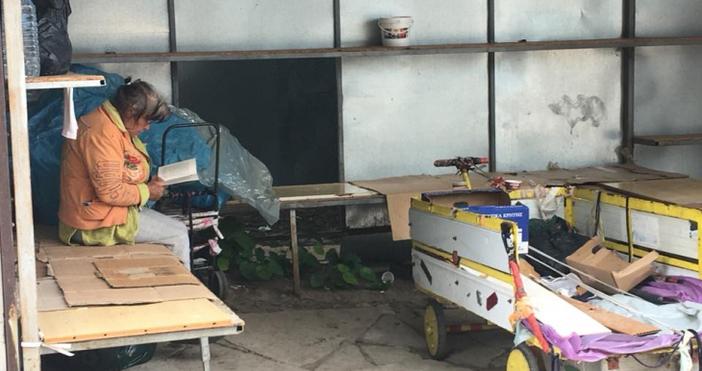 Снимка: Жена намери томче на Вазов в кофата за боклук, думите й по този повод ще ви изумят!