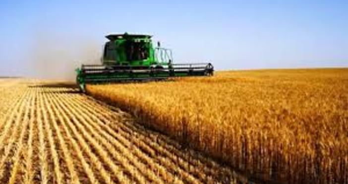 Земеделската земя у нас е поскъпнала с около 5%. Това