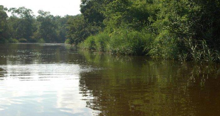 Снимка Булфото, архивПовишили са се водните нива на реките Искър,