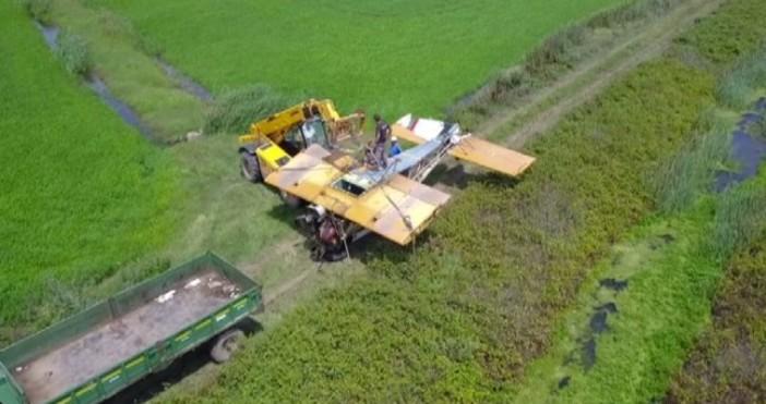 Снимка: bTVИзвадихападналия селскостопански самолет от оризището край град Съeдинение. Разследващи