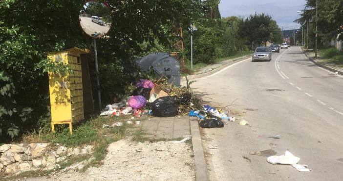 снимки: Меглена ХолНаша читателка от Варна се оплака, че вече