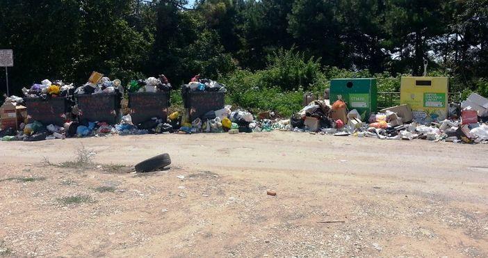 снимки: читателЯдосан от натрупалата се смет около контейнерите във варненския