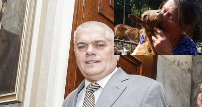Снимка БулфотоУтре ще продължи евтаназията на животните в заразените райони,