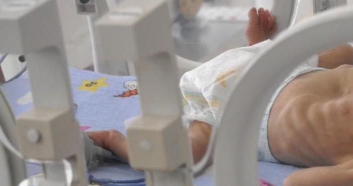 16 970 са бебетата, родени след инвитро операция у нас