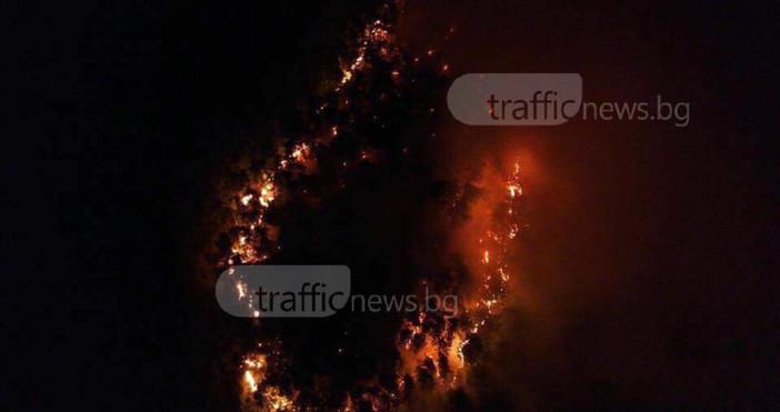 От пожара в гората над Карлово са обхванати между 80