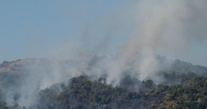 Снимка: Булфото, архивНай-вероятната причина запожара над Карловое умишлен палеж. Това