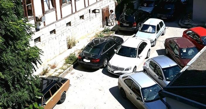 Снимка:Prohaska Adelina, Забелязано във ВарнаЗа нов абсурд със синята зона