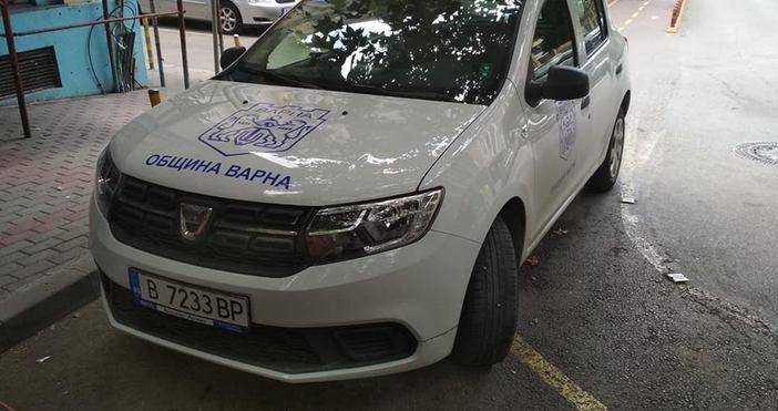 снимки Елена Никифорова, ФейсбукСнимки на служебен автомобил на община Варна,