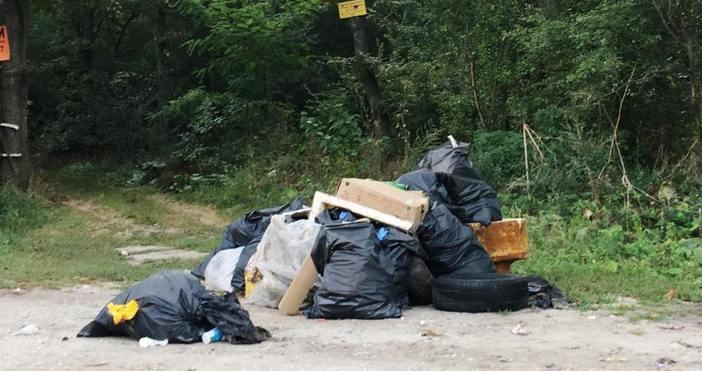 """снимки: """"Петел""""Натрупани чували със отпадъци в района на Харамията край"""