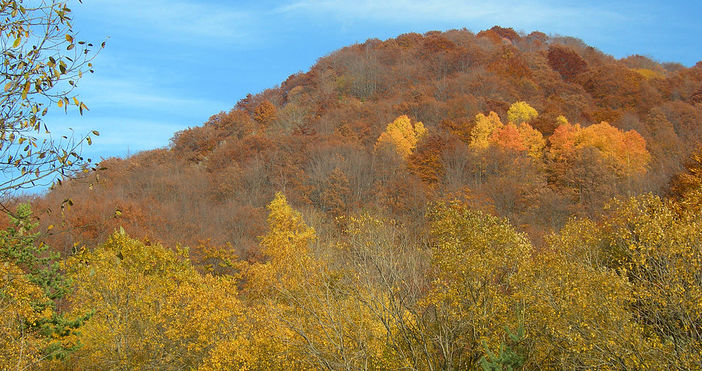 Астрономическата есеннастъпва в 4 часа и 54 минути.Това съобщиха от
