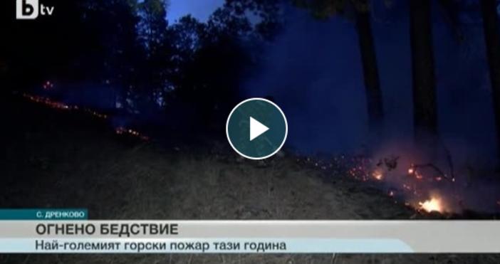 Пожарът над благоевградското село Дренково е най-големият горски пожар тази