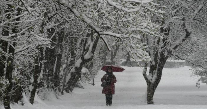 Снимка БулфотоПървият снягзаваля в Силистренско. По данни от Областното пътно