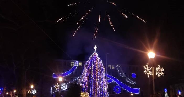 Снимки ПетелЗапалването на светлините на коледната елха във Варна стана