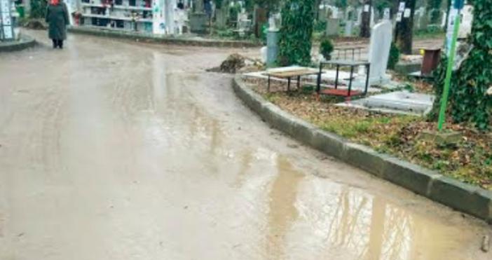 Снимки читателРеки от кал потекоха по алеите на Централните градски