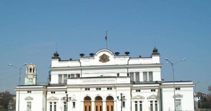 Снимка БулфотоЖени поставиха цветя на стълбите на Народното събрание в