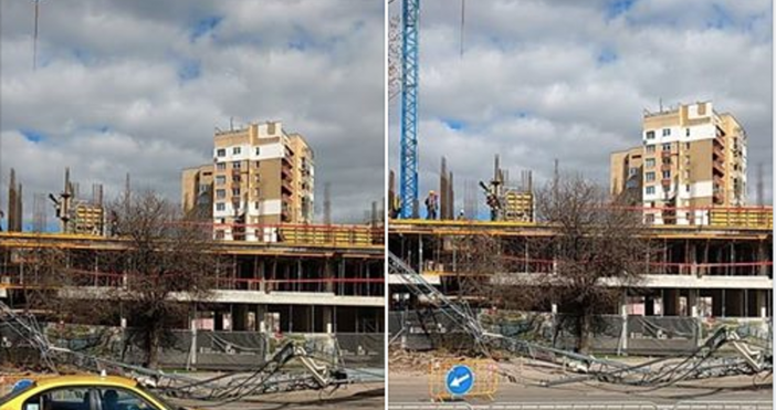 Снимки: Фейсбук/Забелязано в София/Димитър МитевТова показват резултатите от извършената проверка