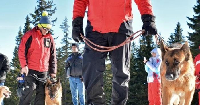 Снимка Булфото, архивТрима спасители са носили близо час на ръце