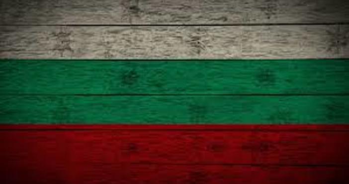 dcnews.bgБалканският лъв е един от най-великите български бойци, покорили Америка