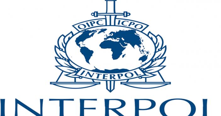 Снимка: МВР стартира проект на Интерпол, свързан с борбата с трафика на хора на Балканите