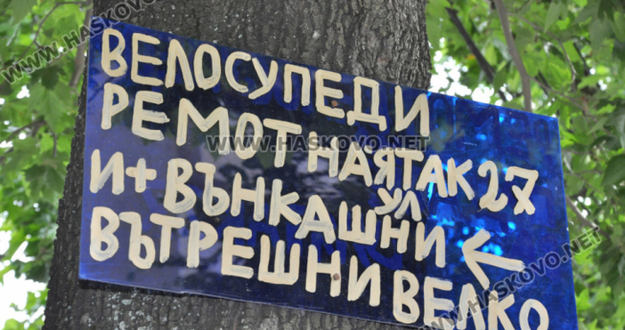 Снимки:haskovo.netКултови табели се появиха на дърветата в Хасково на улица
