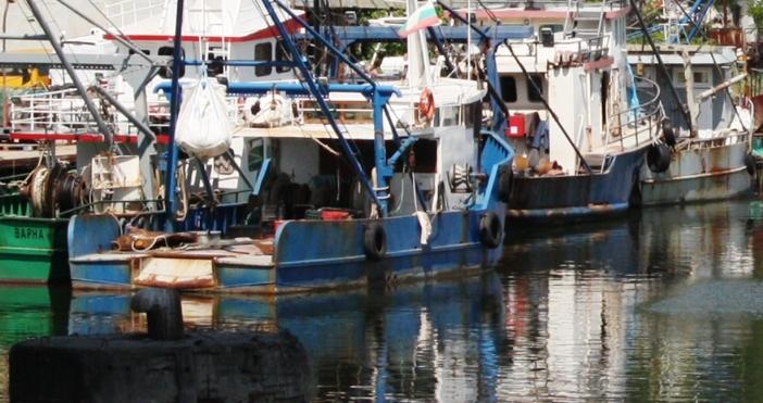 Две пристанища ще развиват активна дейност в район Аспарухово –