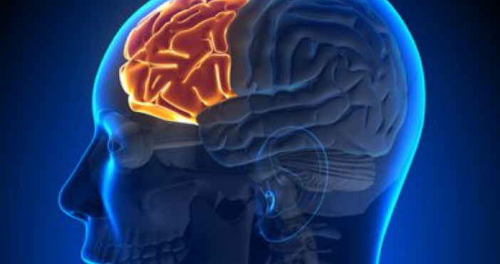Деменциятаеневрологичнозаболяване, което се отличава с влошаване наумствените способности, нарушена концентрация