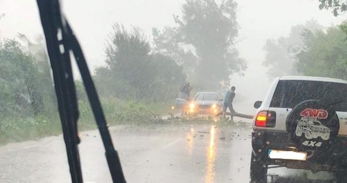 Източник и снимка: razgradnews.netКакто вече писахме, силен пороен дъжд успя