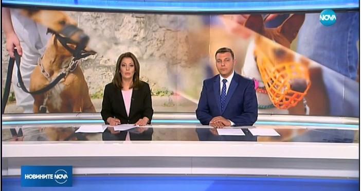 nova.bgВъв Facebook се появи нов хаштаг