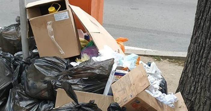 """снимка: Мариян Георгиев, """"Забелязано във Варна""""Проблемите с отпадъците във Варна"""