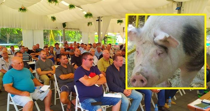 Да бъде забранен достъпа на събирачите на трюфели в горите