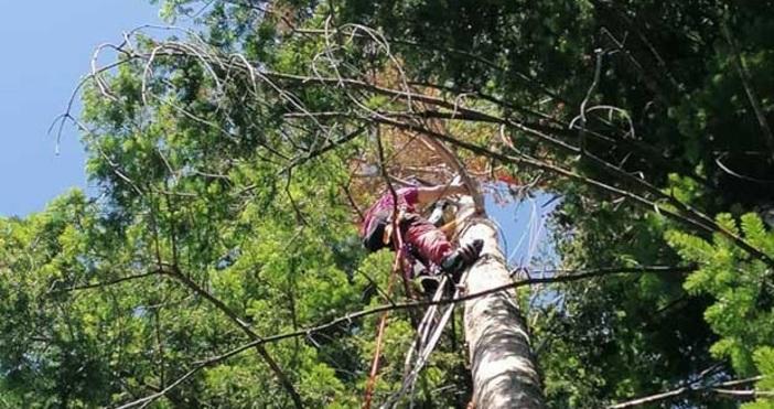 Две акции за няколко часа проведоха спасителите от ПСС-Дупница. Екипите