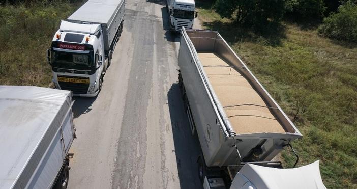 снимки: БулфотоКилометрична опашка от камиони, натоварени със зърно има денонощно