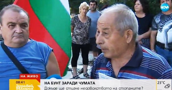 кадър NovaСобственици на прасета в Пазардижшко ще протестират и днес