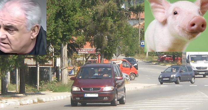 """Снимка: Първо в """"Петел"""": И Старо Оряхово на протест срещу мерките за чумата по свинете. Ето в колко часа затварят пътя Варна - Бургас днес"""