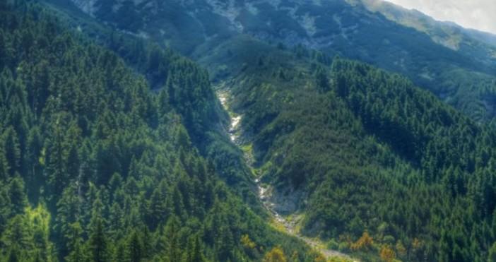 Снимка БулфотоЕкипи на Планинската спасителна служба помогнаха на жена при