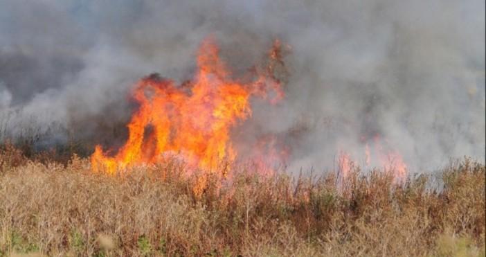 Снимка БулфотоОгънят в района на Дупница е овладян, но частично