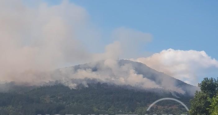 Кадри Нова твГолям пожар гори край софийското село Реброво, научи
