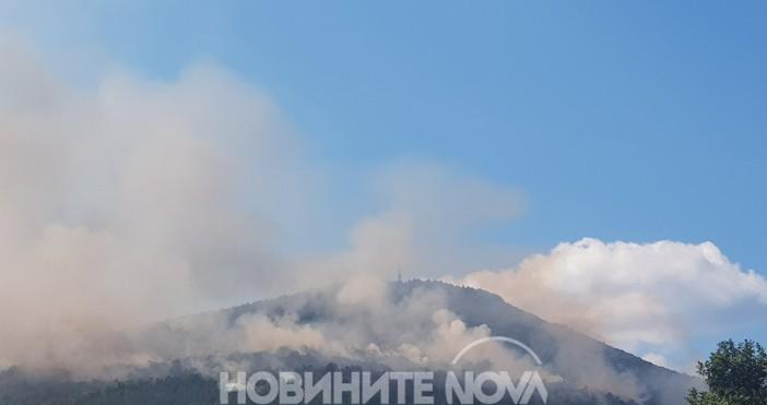 """Локализиран е пожарът край село Реброво, съобщиначалникът """"Национален оперативен център"""""""