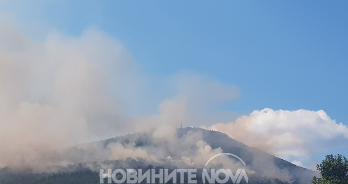 Снимка: Ново огнище на пожара край Реброво - огнената стихия може да обхване борова гора