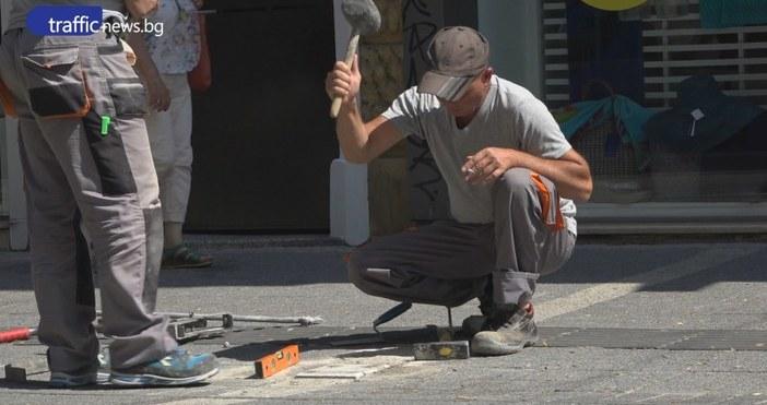 """КадърTrafficNewsМалко по-малко злощастните """"перки"""" по столичната улица"""
