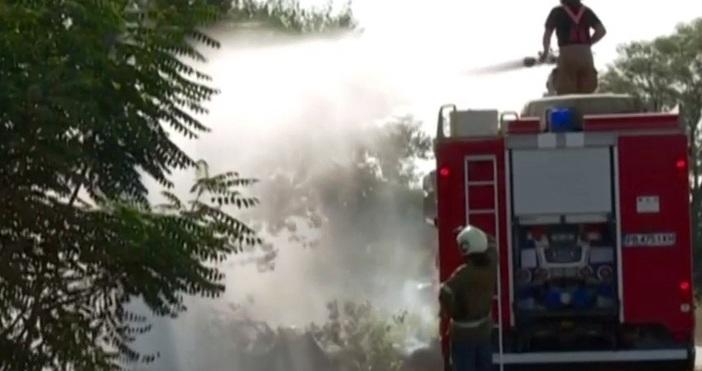 250 декара дъбова гора и пасища изгоряха вчера край Ветрен.