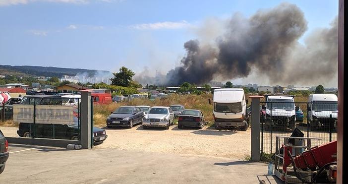 фото: Явор Филипов,Виждам те КАТ - ВАРНАСухи треви горят в
