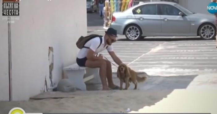 Нова твПо Черноморието ни има животни, които се оказаха без