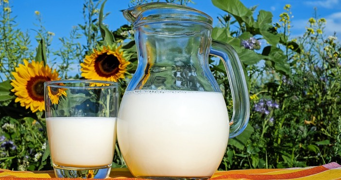 СнимкаpixabayУчениците могат да останат безбезплатните плодове и мляко, твърдят производители