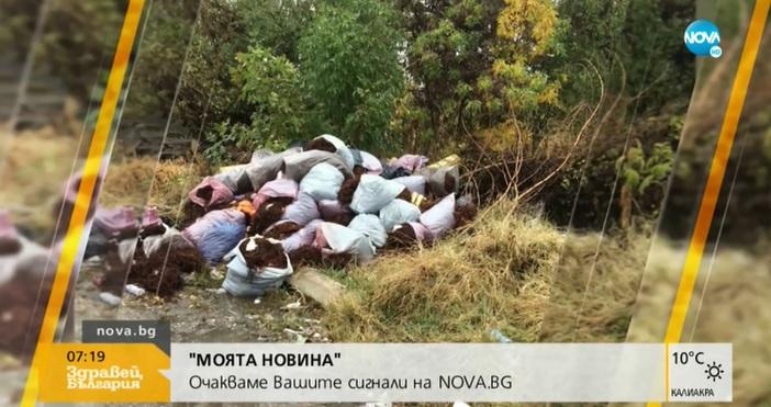 За огромни количества боклук, останали от боса за плодове и